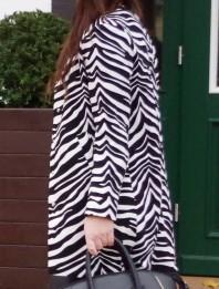 zebra mantel